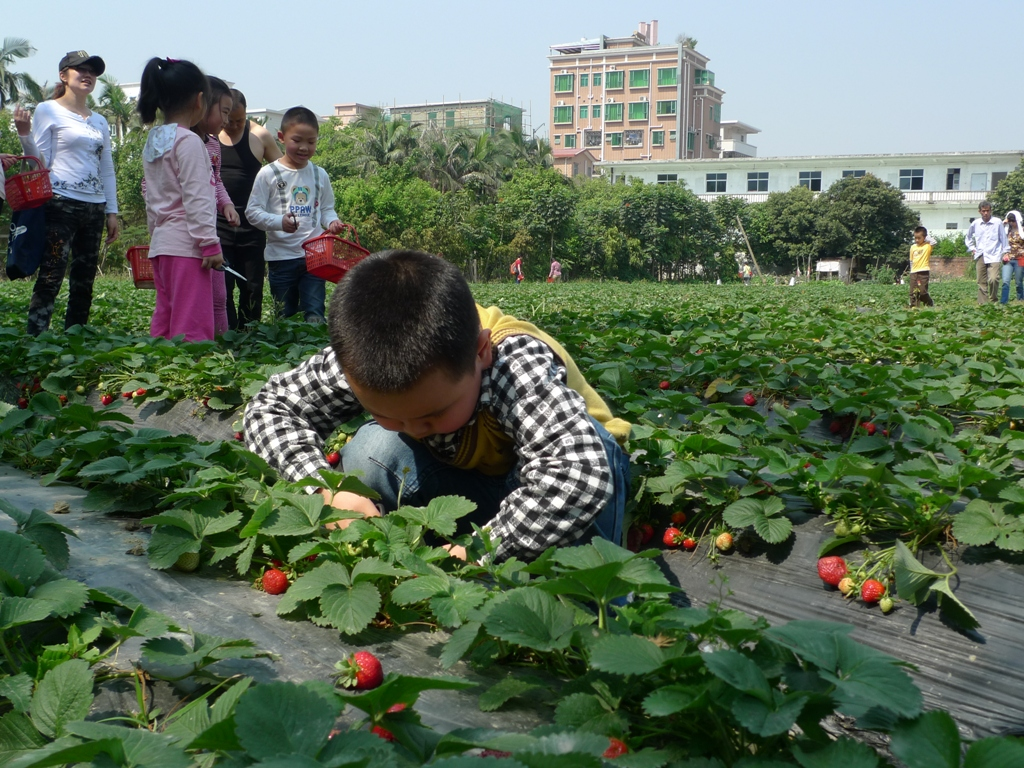 China: the one child big experiment